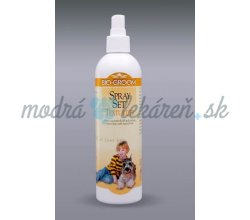 BIO GROOM SPREY SET TEXTURIZER 355ML