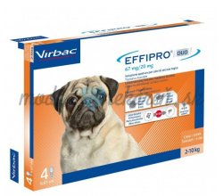 EFFIPRO DUO S 67 mg/ 20 mg spot-on psy 2-10 kg 4 x 0,67 ml